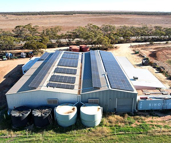Burkett Orange Farm